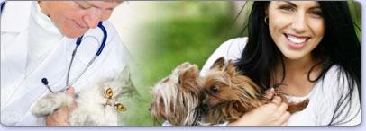 Animal Care Bachelors Degree